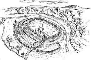 Святовитове поле